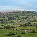 Il vino di Montepulciano, una eccellenza abruzzese